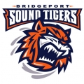Bridgeport Tigers